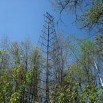 Black Creek Fire Tower